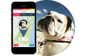 Scout is a GPS Tracker