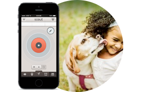 Real-Time Location with Scout